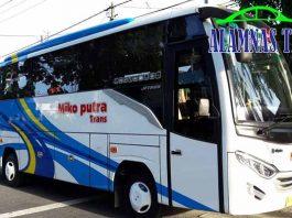 Harga Sewa Bus Pariwisata di Jember Murah Terbaru