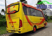 Harga Sewa Bus Pariwisata di Pacitan Murah Terbaru