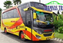 Harga Sewa Bus Pariwisata di Situbondo Murah Terbaru