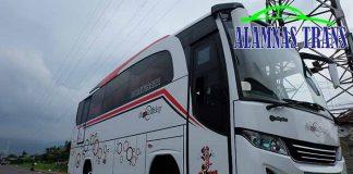 Daftar Harga Sewa Bus Pariwisata di Karawang Murah Terbaru
